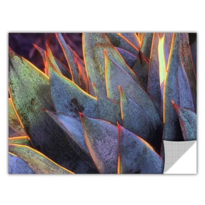 Brushstone Sun Succulent Removable Wall Decal