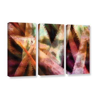 Brushstone Suculenta Paleta 2 3-pc. Gallery Wrapped Canvas Wall Art