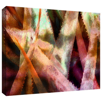 Brushstone Suculenta Paleta 2 Gallery Wrapped Canvas Wall Art