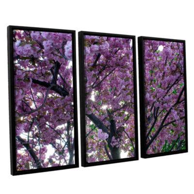 Brushstone Spring Flowers 3-pc. Floater Framed Canvas Wall Art