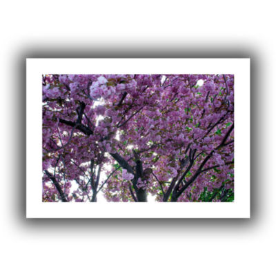Brushstone Spring Flowers Canvas Wall Art