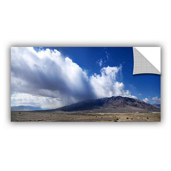 Brushstone Storm in Death Valley Removable Wall Decal