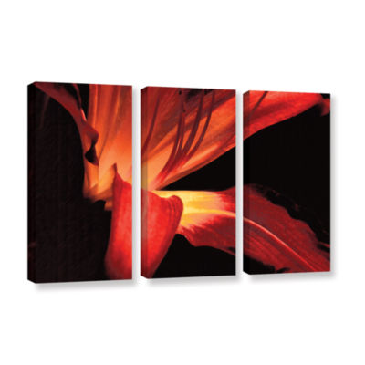 Brushstone Blossom Glow 3-pc. Gallery Wrapped Canvas Wall Art