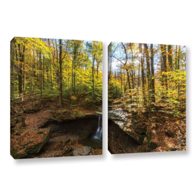 Blue Hen Falls 2-pc. Gallery Wrapped Canvas Wall Art
