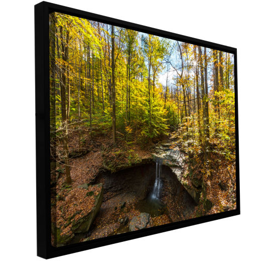 Blue Hen Falls Gallery Wrapped Floater-Framed Canvas Wall Art