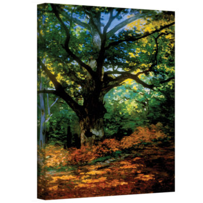 Bodmer Oak At Fountainbleau Forest Gallery Wrapped Canvas Wall Art