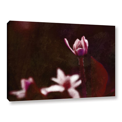 Born Gallery Wrapped Canvas Wall Art