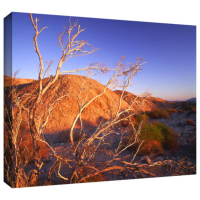 Borrego Badlands Gallery Wrapped Canvas Wall Art