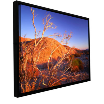 Borrego Badlands Gallery Wrapped Floater-Framed Canvas Wall Art