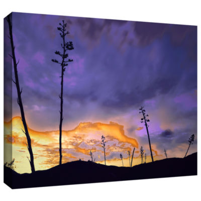 Borrego Desert Dawn Gallery Wrapped Canvas Wall Art