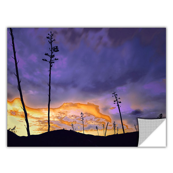 Borrego Desert Dawn Removable Wall Decal