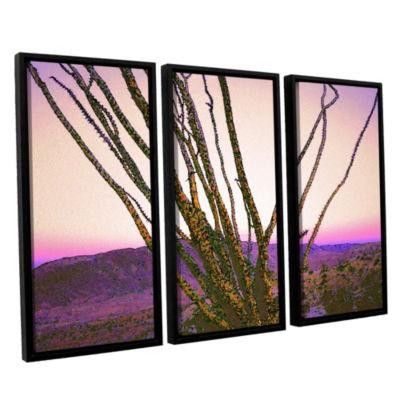Borrego Desert Dawn 3-pc. Floater Framed Canvas Wall Art