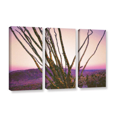 Borrego Desert Dawn 3-pc. Gallery Wrapped Canvas Wall Art
