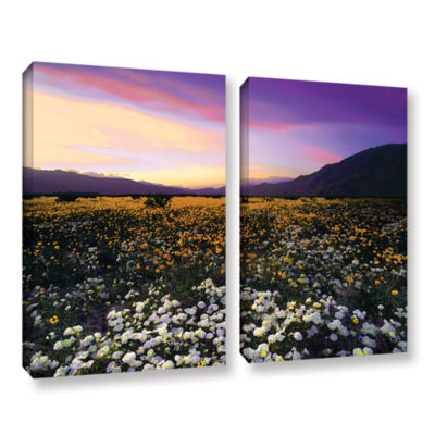 Borrego Desert Spring 2-pc. Gallery Wrapped CanvasWall Art