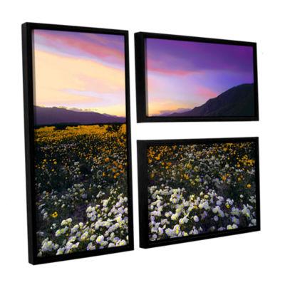 Borrego Desert Spring 3-pc. Flag Floater Framed Canvas Wall Art