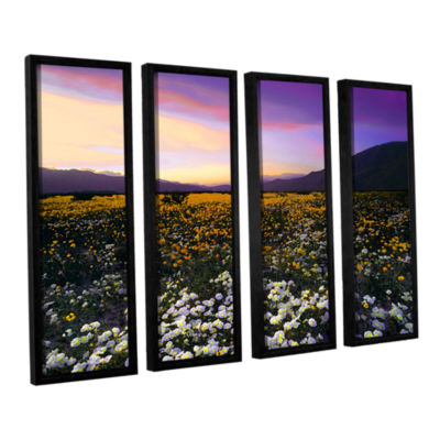 Borrego Desert Spring 4-pc. Floater Framed Canvas Wall Art