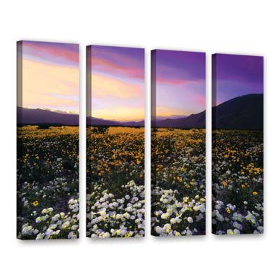 Borrego Desert Spring 4-pc. Gallery Wrapped CanvasWall Art