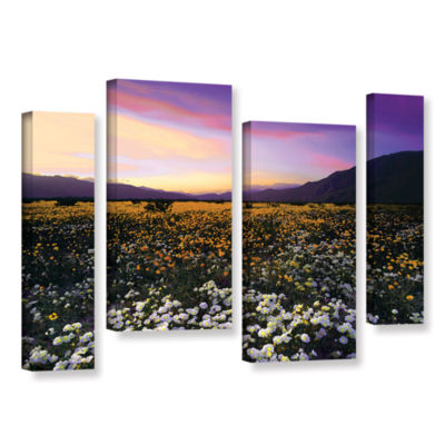 Borrego Desert Spring 4-pc. Gallery Wrapped Staggered Canvas Wall Art