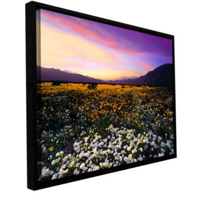 Borrego Desert Spring Gallery Wrapped Floater-Framed Canvas Wall Art