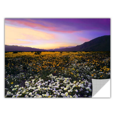 Borrego Desert Spring Removable Wall Decal