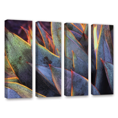Brushstone Sun Succulent 4-pc. Gallery Wrapped Canvas Wall Art