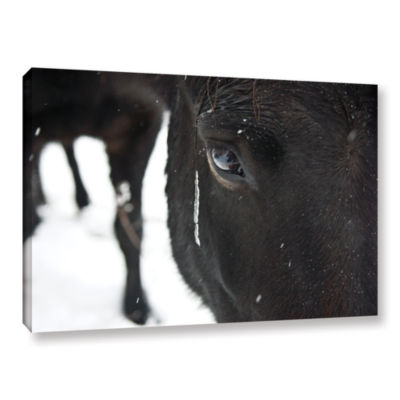 Blackhorse1 Gallery Wrapped Canvas Wall Art