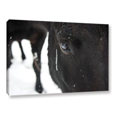 Brushstone Blackhorse1 Gallery Wrapped Canvas WallArt