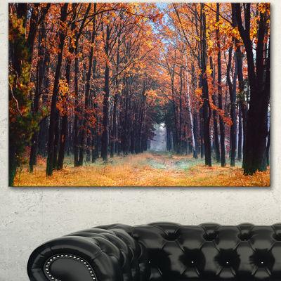 Designart Alley In The Dense Autumn Forest ForestCanvas Art Print