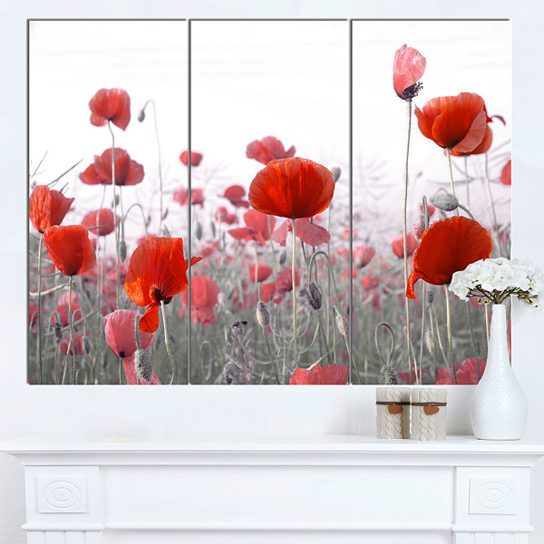 Designart Amazing Red Poppy Flower Garden FlowerArtwork On Canvas 3 Panels