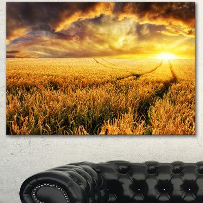 Designart Amazing Sunset Over Yellow Field Landscape Canvas Art Print