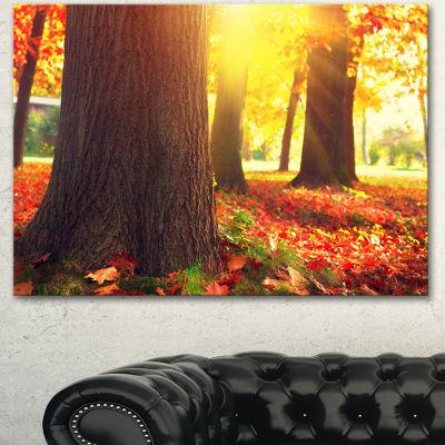 Designart Autumn Trees In The Sunlight Large Landscape Canvas Art 3 Panels