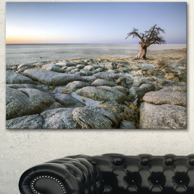 Designart Baobab Tree On Rocky Terrain Large Landscape Canvas Art  3 Panels