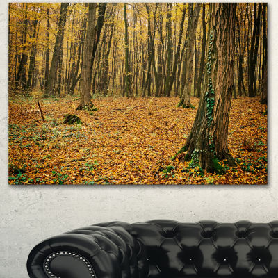 Designart Beautiful Autumn Forest In Mountains Modern Forest Canvas Art 3 Panels
