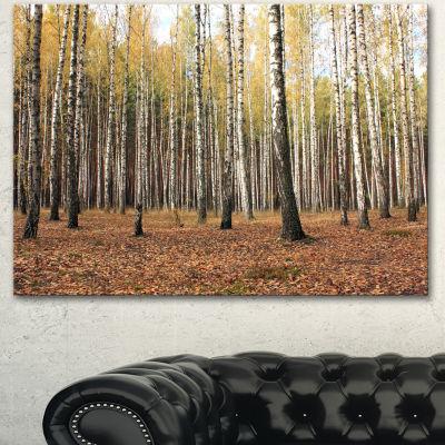 Designart Beautiful Birch Forest Photography Modern Forest Canvas Art