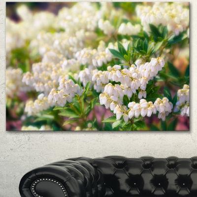 Design Art Beautiful Blooming White Flowers FloralCanvas Art Print