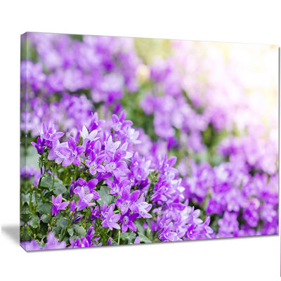 Designart Beautiful Campanula Flower Bouquet LargeFloral Canvas Artwork