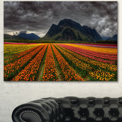 Designart Beautiful Colored Tulips Panorama LargeLandscape Canvas Art 3 Panels