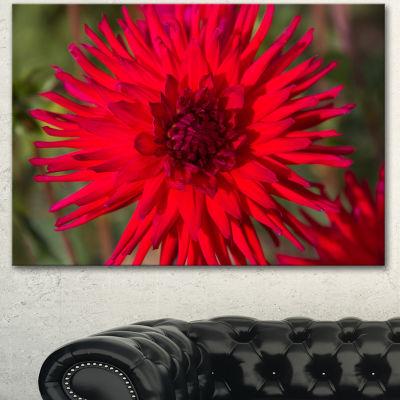 Designart Beautiful Dahlia Flower On Green FlowersCanvas Wall Artwork 3 Panels