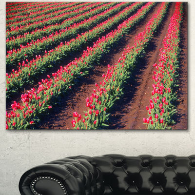 Design Art Beautiful Field Of Red Tulip Flowers Large Landscape Canvas Art