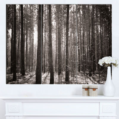Designart Beautiful Misty Forest In The Autumn Forest Canvas Art Print 3 Panels