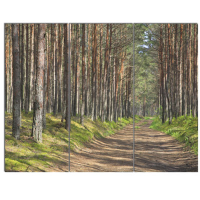 Designart Beautiful Road Through Thick Woods Modern Forest Canvas Art 3 Panels