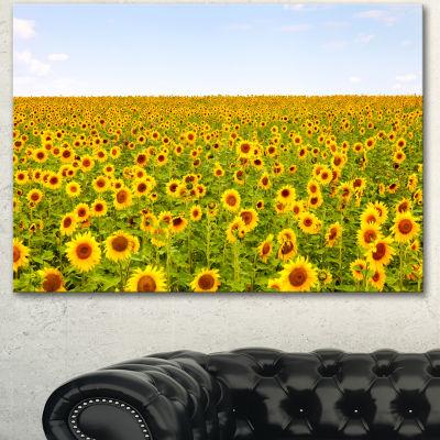 Designart Beautiful Sunflowers Garden Floral Canvas Art Print
