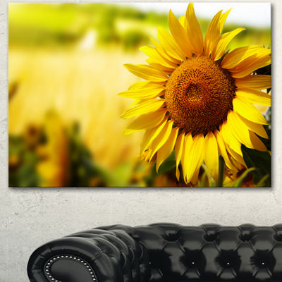 Designart Beautiful Tuscany Sunflower Floral Canvas Art Print 3 Panels