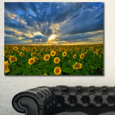 Designart Beauty Sunset Over Sunflowers LandscapeCanvas Art Print  3 Panels