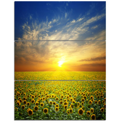 Designart Beauty Sunset Over Sunflowers Field Floral Canvas Art Print  3 Panels