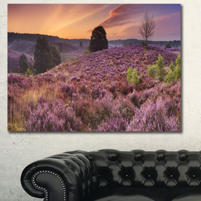 Designart Blooming Heather At Dawn Panorama Landscape Canvas Art Print 3 Panels