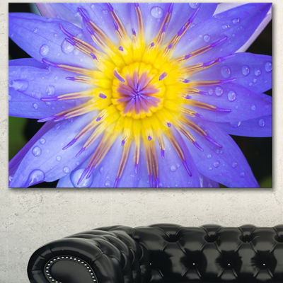 Designart Blooming Violet Lotus Close Up FlowersCanvas Wall Artwork 3 Panels