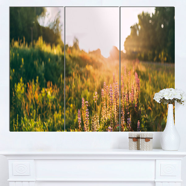 Designart Bloomy Glade Of Wild Flowers Large Landscape Canvas Art 3 Panels