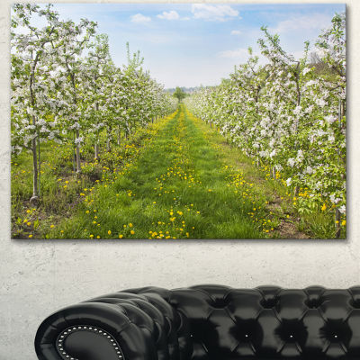 Designart Bloomy Peach Forest Photography FloralCanvas Art Print