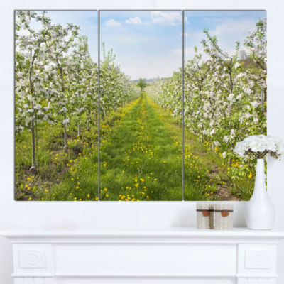 Designart Bloomy Peach Forest Photography Floral Canvas Art Print  3 Panels